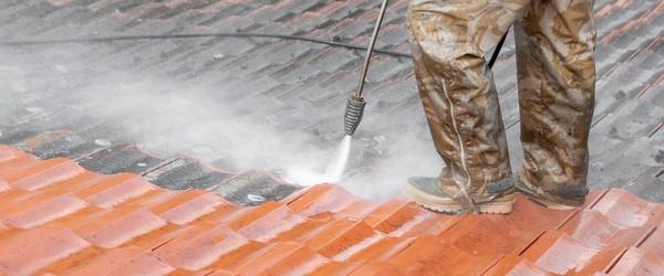 société nettoyage toit
