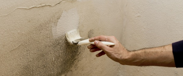 peinture anti moisissures