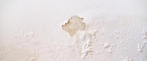 traces humidite